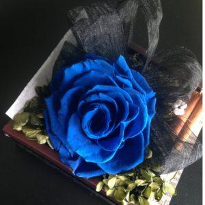 ブルーのバラ 青いバラ メリア 大きなバラ アモローサ 贈り物 ギフトフラワー プリザーブドフラワー