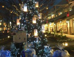星ヶ丘テラス クリスマスツリー デート イルミネーション ヒンメリ 浮かぶ花