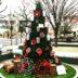 星ヶ丘 星が丘テラス 星ヶ丘テラス お正月 ヒンメリ お正月飾り お正月ツリー イルミネーション
