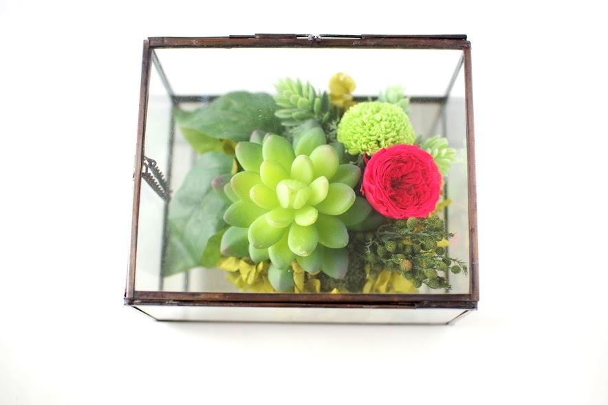 男性へのプレゼント,男性へのギフト,多肉植物,フェイクプランツ