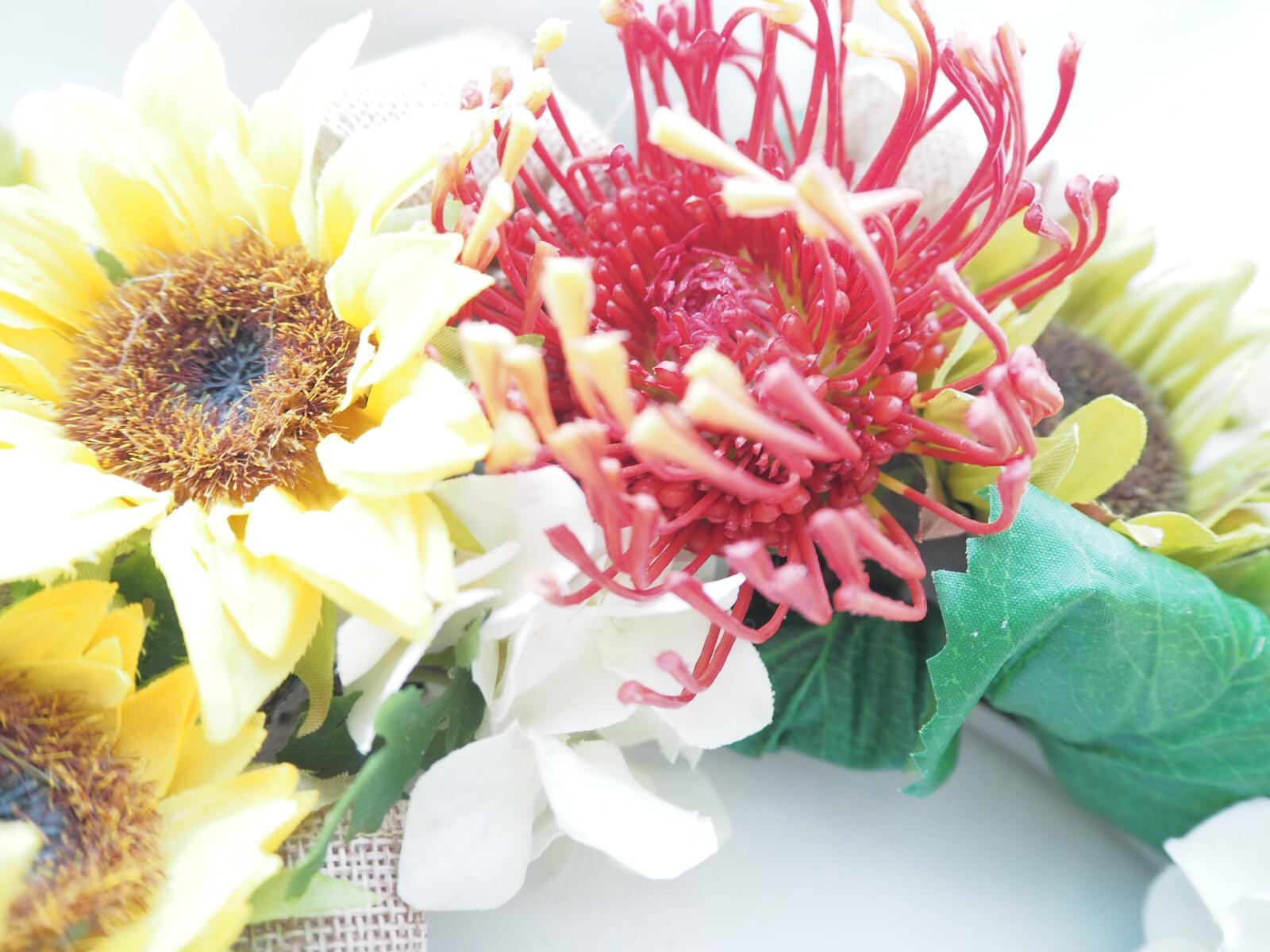 ピンクッション,針山,花,アフリカ,トロピカル,