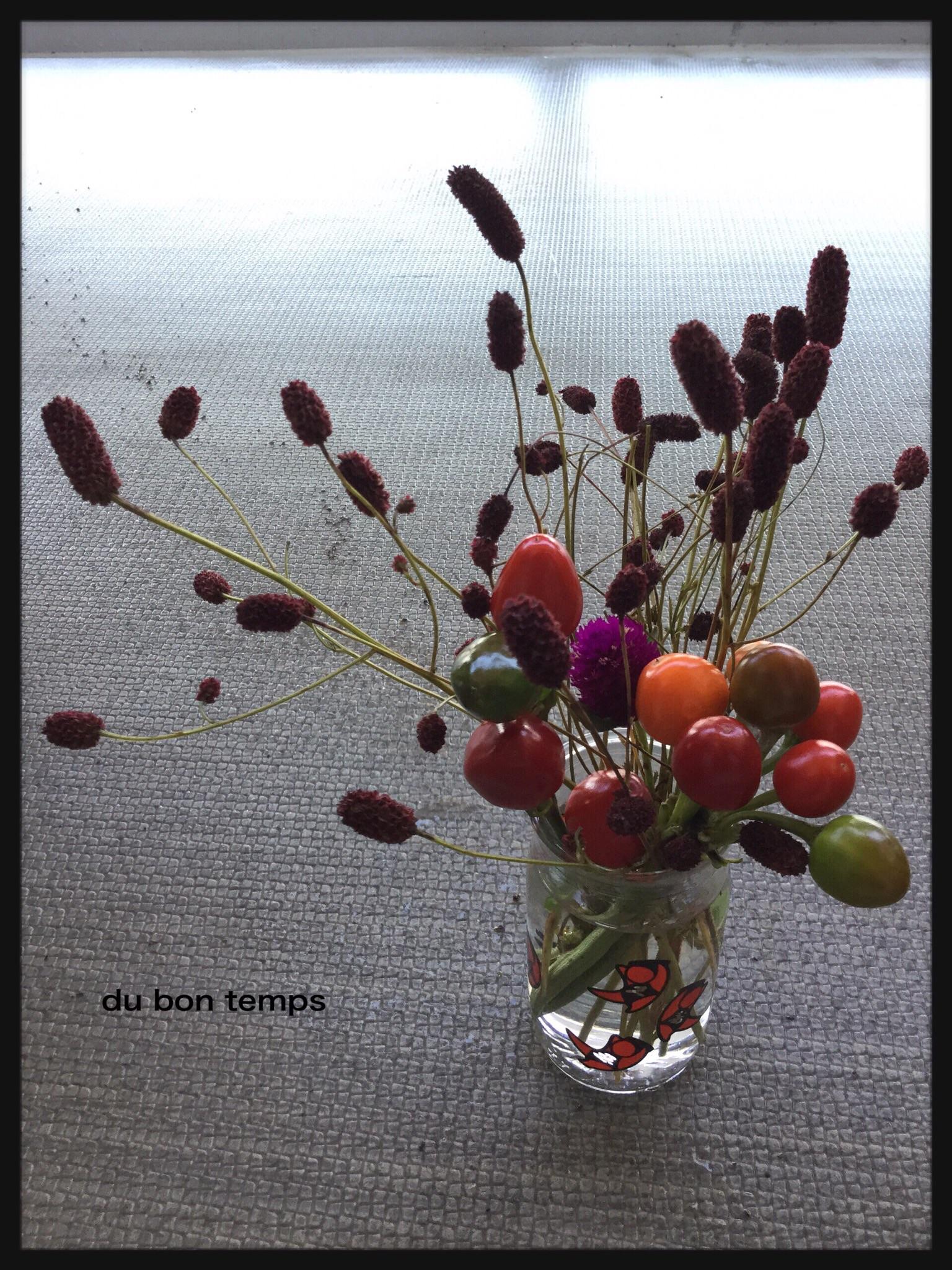 とうがらし,われもこう,秋の花,ハロウィン,